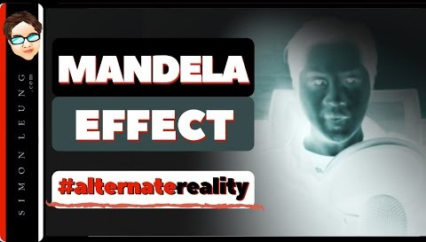mandela effect in business does an alternate reality or parallel universe determine your success